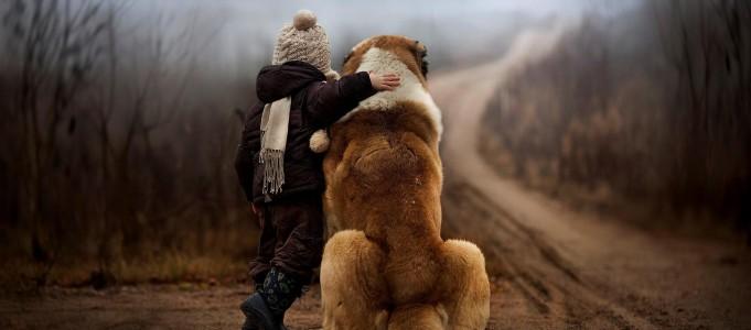Les blessures émotionnelles peuvent perdurer et perturber longtemps un individu
