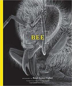 Livre de Fisher : Bee Topographie des larmes - Mon carre de sable